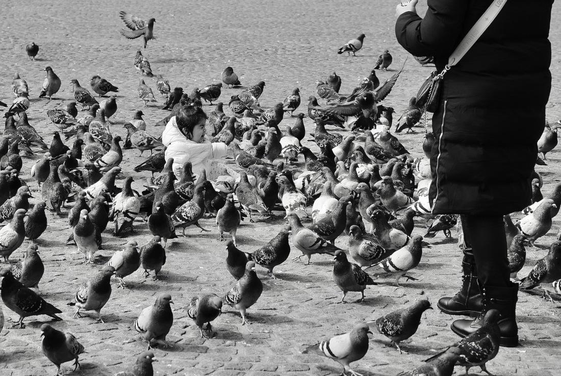 dam-duiven-kind - 1