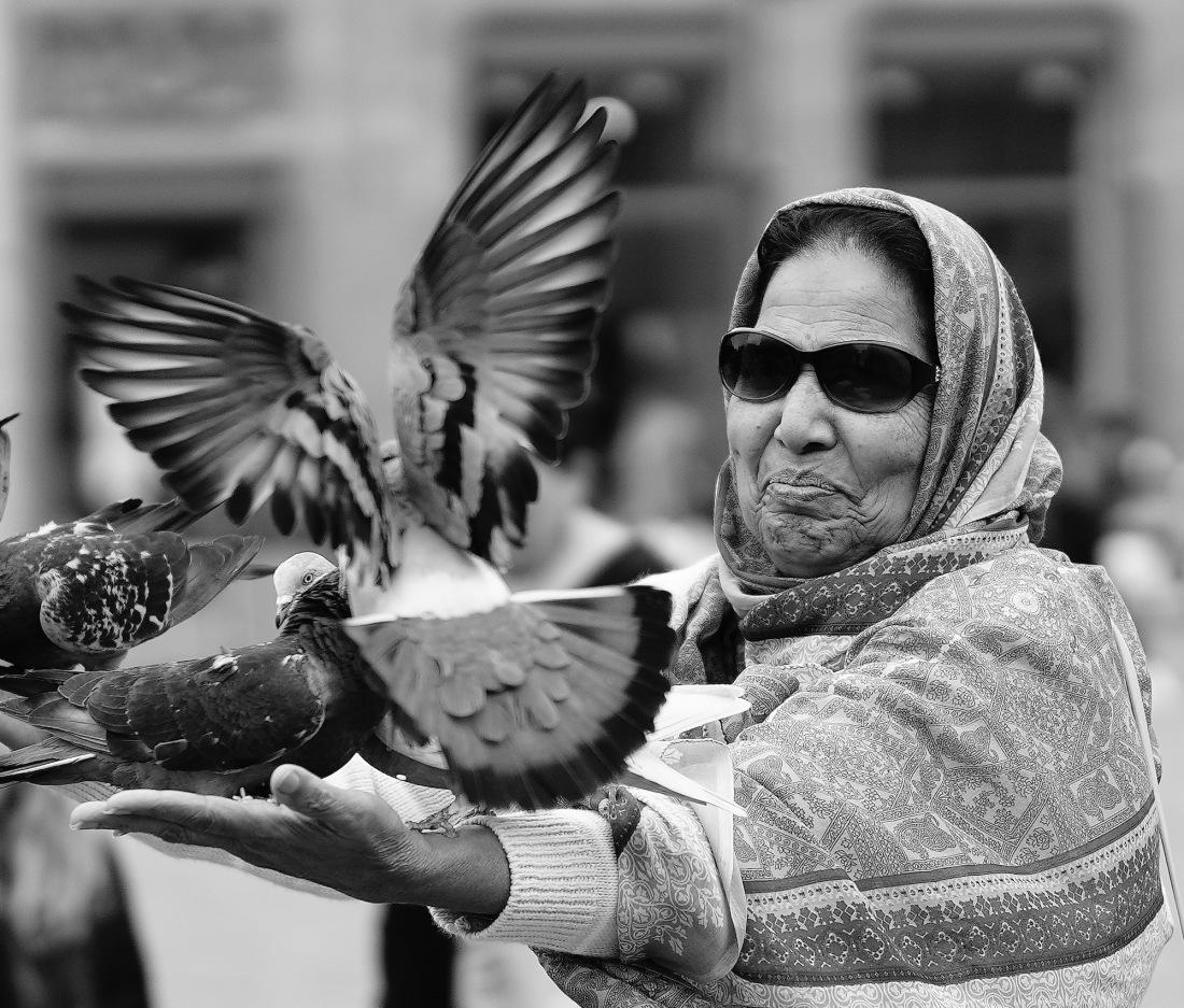 portret-v-duiven - 1